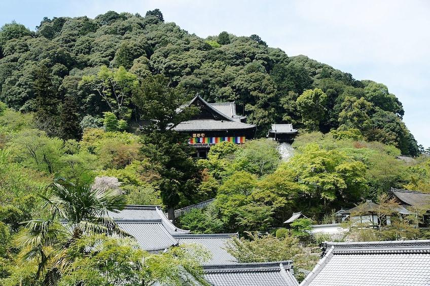 Show item 5 of 7. 7-hour Kamakura tour to/from Yokohama with private car