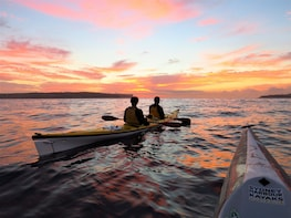 Beautiful Middle Harbour Sunriser - Guided Kayaking Tour
