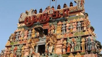 Chennai Cultural Experience