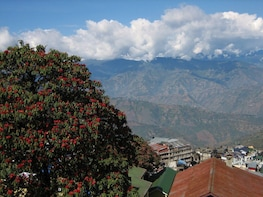 Walking tour of Darjeeling with lunch