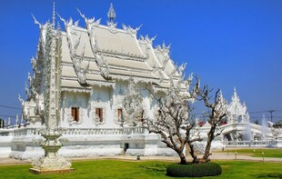 Temple Highlights in Chiang Rai Day Trip