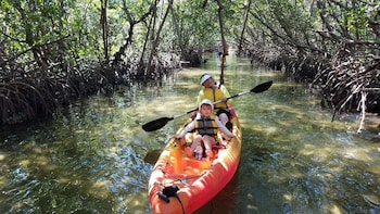 Self Guided Kayak Tour of the Lido Mangrove Tunnels