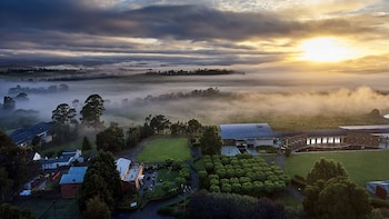 Yarra Valley Iconic Tour with Lunch and Local Guide