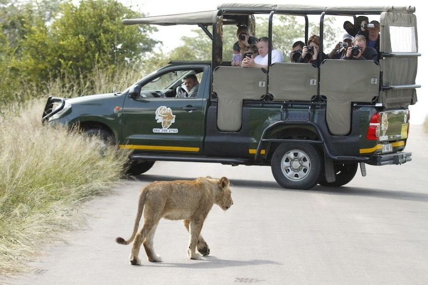 Show item 1 of 6. 4-day Kruger National Park Experience Package  (3 star)