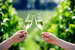 Private Penedes Wine and Cava Day Tour from Barcelona with Transport