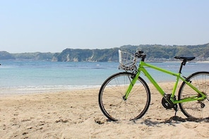 Private Tour - Forest Swimming and Seaside Cycling in Minamiboso