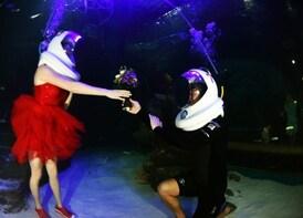 Gyeonggi-do Aquarium Ticket with Seawalker Experience