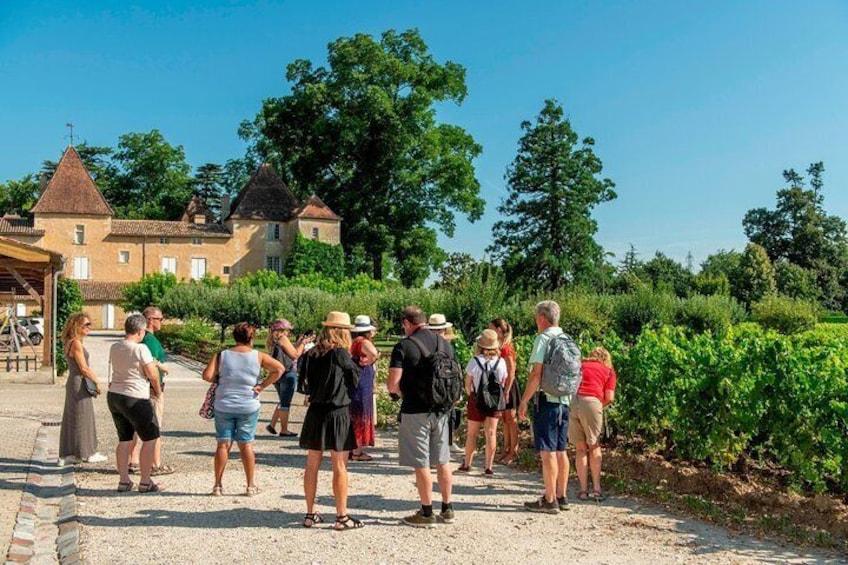 Bordeaux Vineyards Wine Tasting Half-Day Trip