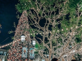 Christmas Market and Christmas Lights in Charming Pasadena