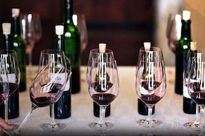 Private Napa Valley Wine Tour - 8 Hour Luxury SUV