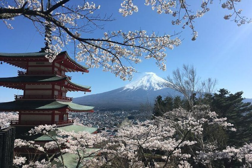 Show item 3 of 10. Private Mt Fuji and the Gotemba Outlet in One Day from Tokyo