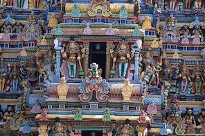 Visit to Meenakshi Temple with street food tour-Madurai