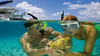 Snorkelling Trip to Tiran Island