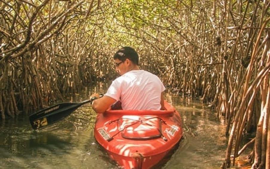 Show item 1 of 3. Mangrove Kayaking Tour – Havelock