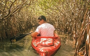 Mangrove Kayaking Tour – Havelock