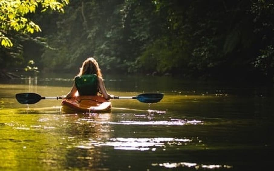 Show item 3 of 3. Mangrove Kayaking Tour – Havelock