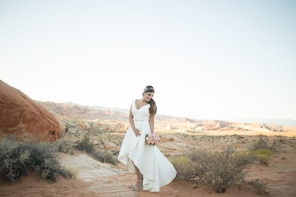 Valley of Fire Wedding via Private Limousine