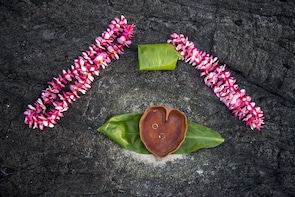 Wedding Ceremony or Vow Renewal on the Big island