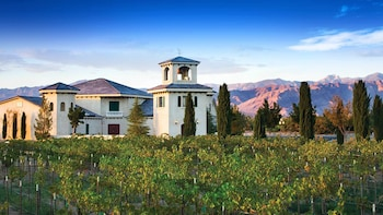 Pahrump Valley Winery Tour with VIP Transportation