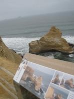 Ballestas Islands and National Reserve ParacasTour