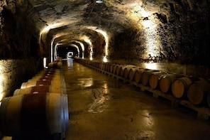 Full day - Best of Rioja wine tour
