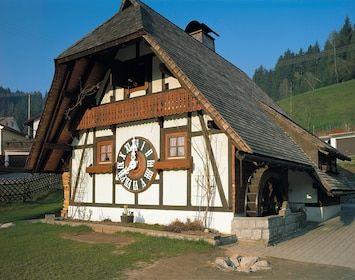 Day Tour through the Black Forest (8h, chauffeur, guide)