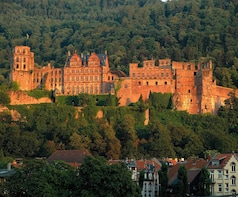 Private Heidelberg Castle Tour (1.5h with guide)