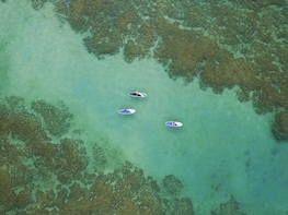 Anini Beach Paddle Boarding Lessons