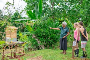 WaiMakare Forest Farm Traditional Wellness Suva Day Tour