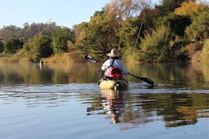 Guided Small Group river kayak tours