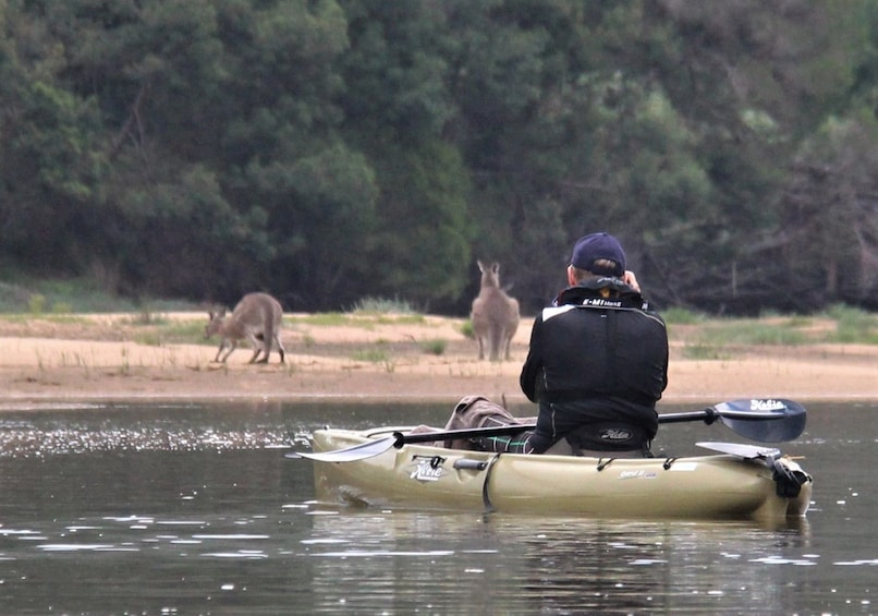 Show item 6 of 6. Guided Small Group river kayak tours