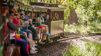Australia Melbourne Puffing Billy Steam Train Ticket