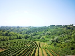 Zagreb Countryside Food & Wine Private Day Trip