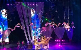 Evening Tour of Guangzhou Chimelong International Circus