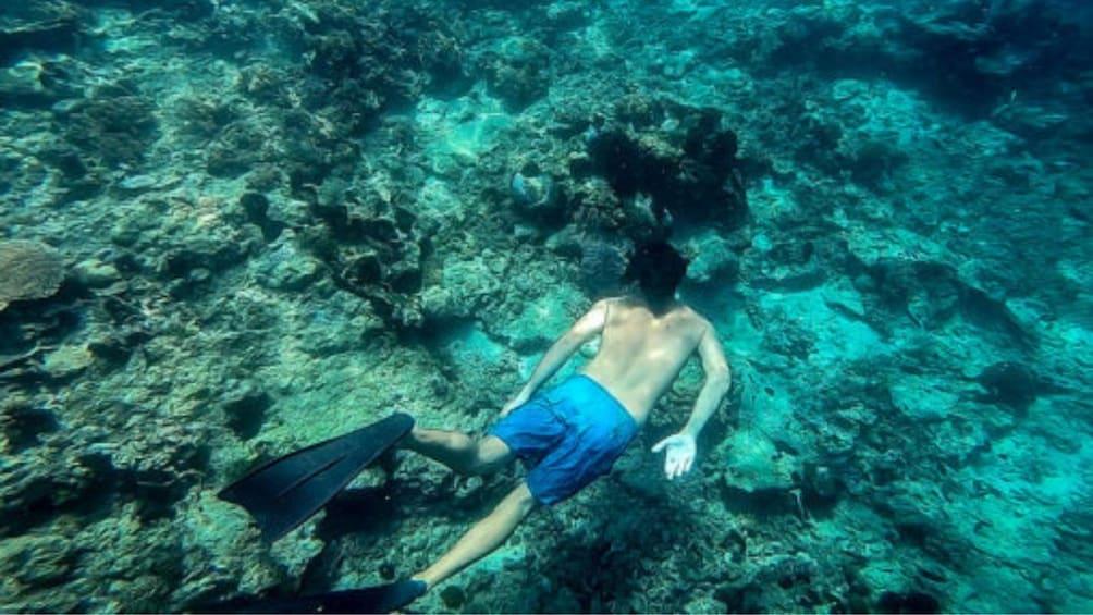 Private Lombok Snorkeling Tour at Gili Rengit & Gili Layar