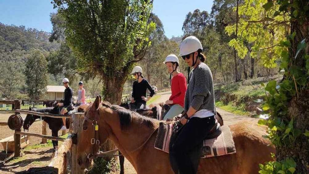 Horse Riding, Lunch and Winery Tour
