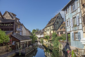 Full Day Best of Alsace Tour from Strasbourg