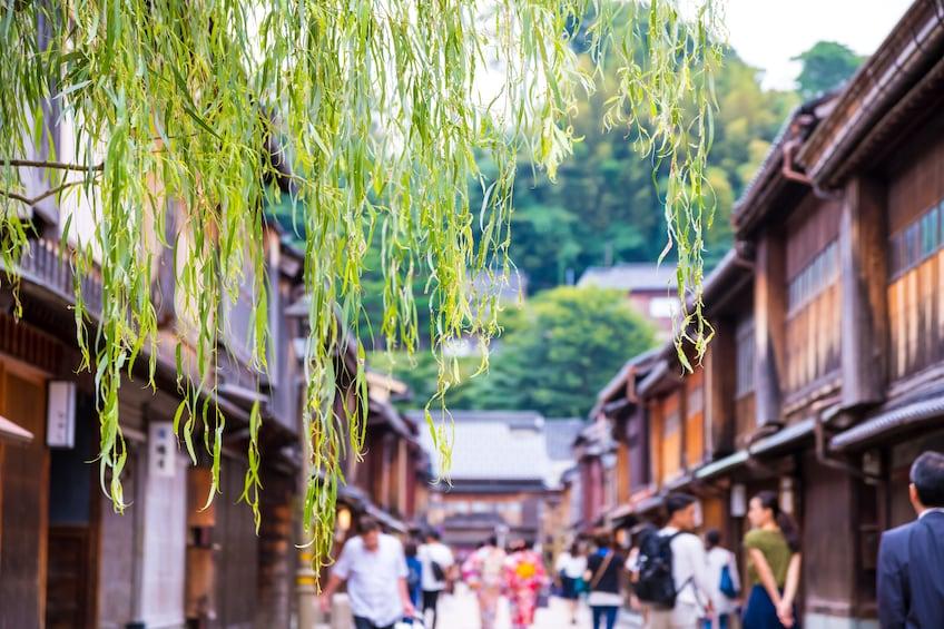 Show item 3 of 5. Day Trip to Shirakawago, Gokayama or Takayama from Kanazawa!