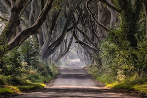 Game of Thrones & Giants Causeway - Westeros Private Tour