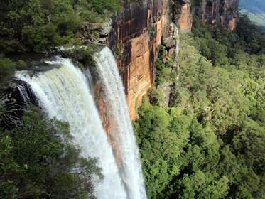 C2C Fizroy Falls.jpg