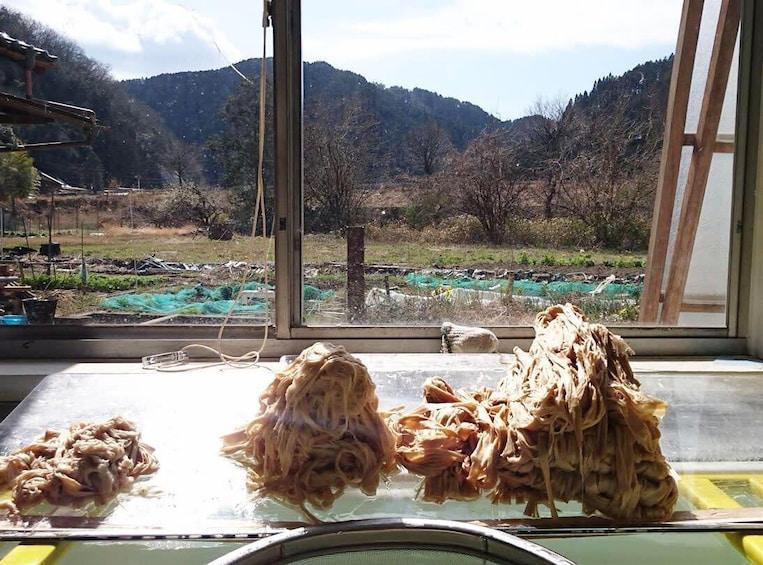Washi Paper Making with an Artisan in Mino, Gifu Prefecture