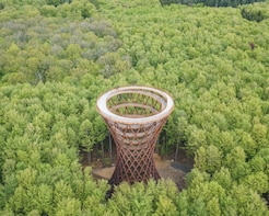 Forest Tower Tour