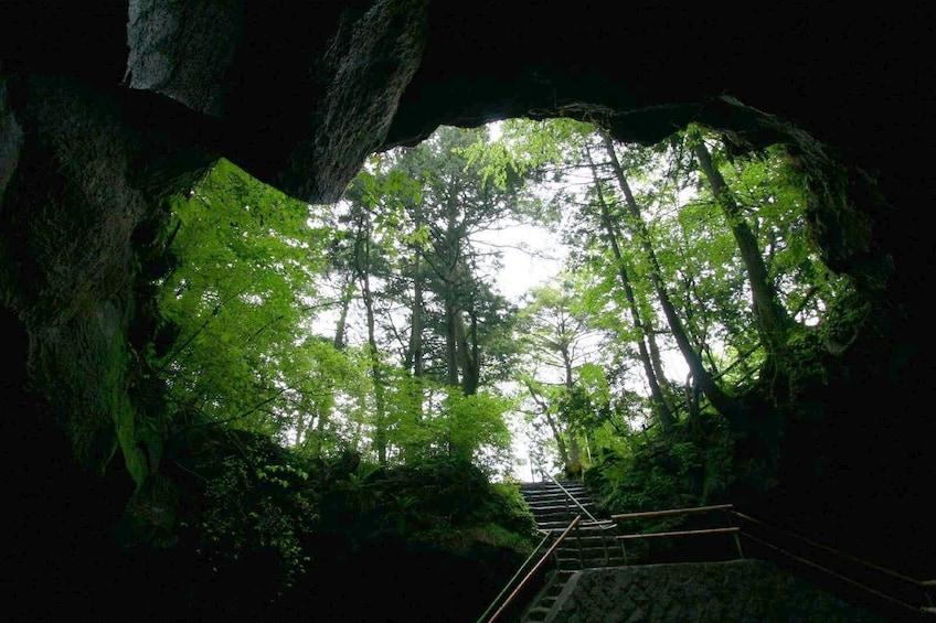 Show item 2 of 10. Mount Fuji Panorama Ropeway, Ice Caves and Sake Brewery Tour