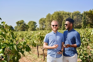 Let's discover Provence Wines - 1/2 day tour