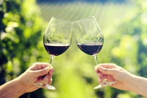 Baja Wine Tours from San Diego