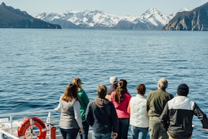 11:30 AM Kenai Fjords National Park Cruise with Lunch