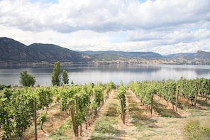 "Naramata Wine Tour Full Day ""Ëxcursion"""