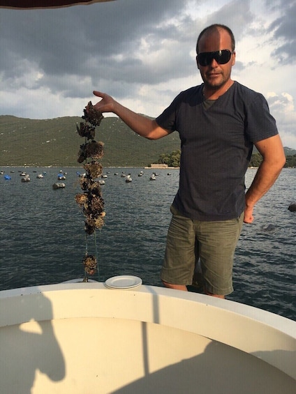 Empire of wine & oysters - Peljesac tour