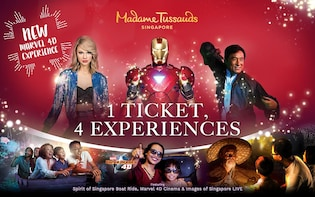 Madame Tussauds 4-in-1 Combo