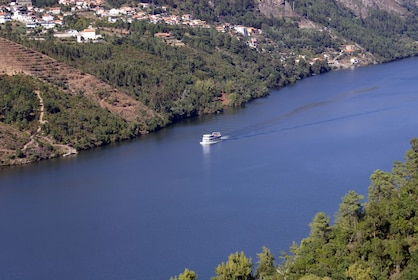 4 days Douro Tour, hotel, wine tastings, cruise, buggy, Fado